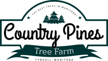 Country Pines Tree Farm
